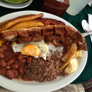 Bandeja junior