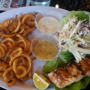 Red Snapper Fillet with curled french fries and Salad