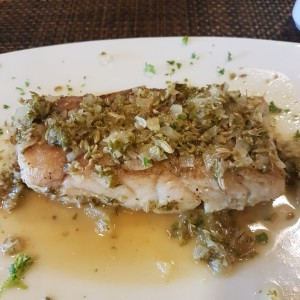 Corvina with Fennel Sauce
