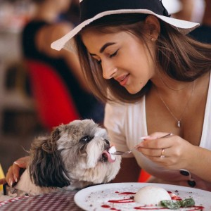Restaurantes Pet Friendly