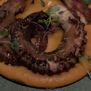 MAIN - GRILLED OCTOPUS