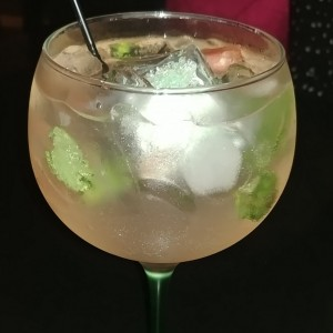 gintonic limon tanqueray