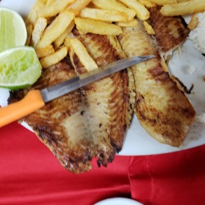 filete de pescado (tilapia)