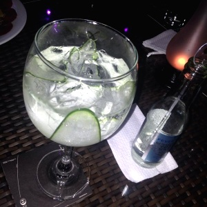 Hendricks and Mediterranean Tonic